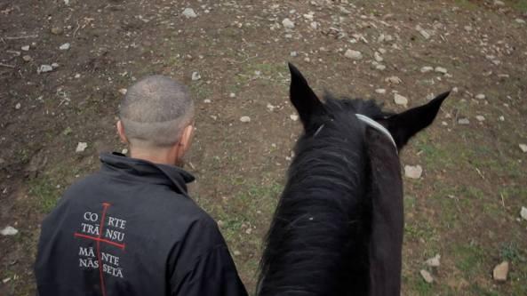 Giovanni Lindo Ferretti cavallo